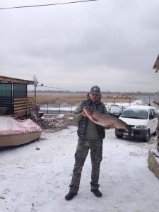 Белый амур 12,4 кг 19 декабря 2014 г. р.Конка