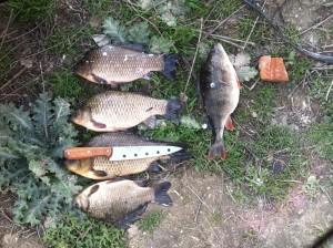 Рыбалка весной на базе Рыбачий хутор